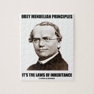 Obey Mendelian Laws Of Inheritance (Gregor Mendel) Jigsaw Puzzle
