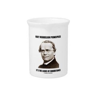 Obey Mendelian Laws Of Inheritance (Gregor Mendel) Pitchers