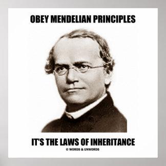 Obey Mendelian Laws Of Inheritance (Gregor Mendel) Posters