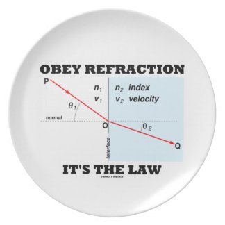 Obey Refraction It's The Law (Snell's Law Physics) Dinner Plate