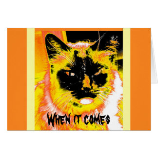 Obey the Cat - Halloween notecard