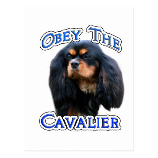 Obey the Cavalier Postcard