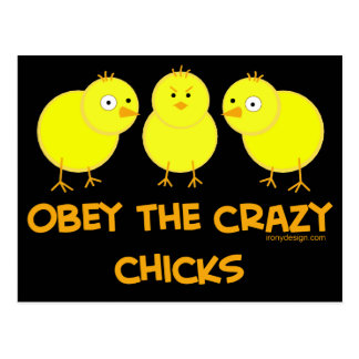 Obey The Crazy Chicks Post Cards