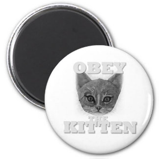 Obey the Kitten Magnet