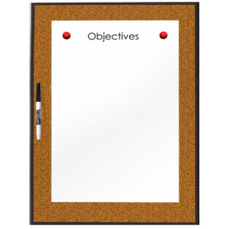 Objectives Dry Erase Board