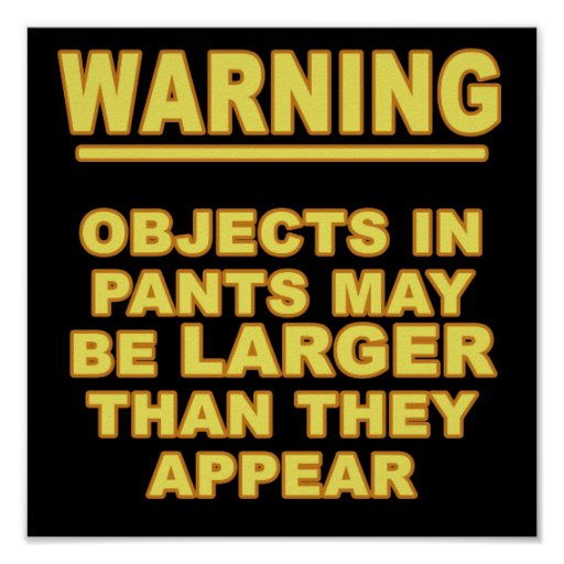 Objects In Pants Poster