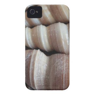 Oblong  Summer Seashells, Summer Season iPhone 4 Cover