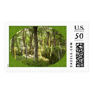Oboe Forest Postage