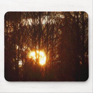 OBRAS MAESTRAS de la luz del sol de la NATURALEZA  Tapetes De Ratón