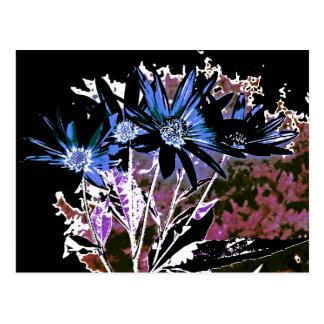 Obscure Flowers Postcard