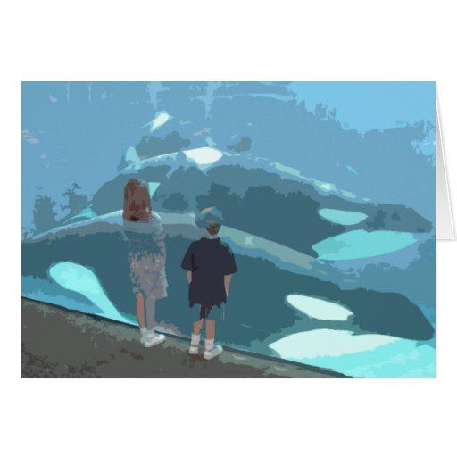 Observación de la ballena felicitacion