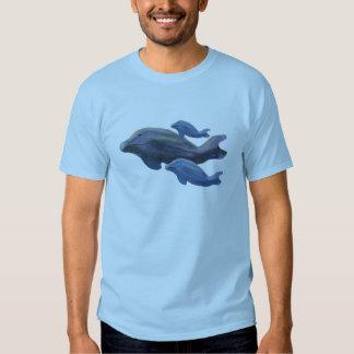 Observación de la ballena playeras