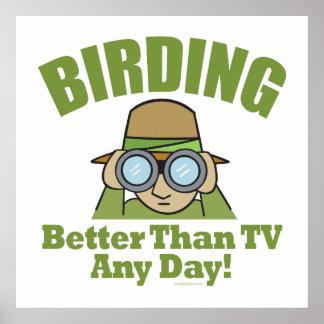 Observación de pájaros, Birding Póster
