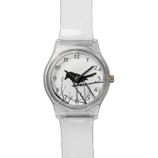 Observación de pájaros del amor de la silueta del relojes de mano