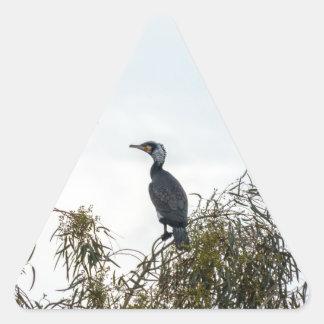 Observación de pájaros del cormorán de  de la pegatina triangular