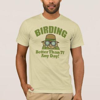 Observación de pájaros playera