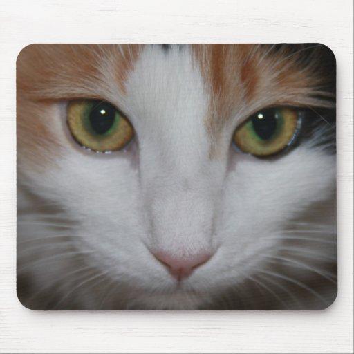 Observación de usted tapete de ratón