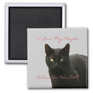 Observación del gato negro imán cuadrado