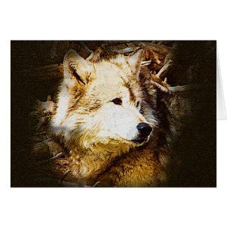 Observación del lobo gris tarjeta