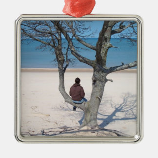Observación del ornamento del lago adorno navideño cuadrado de metal