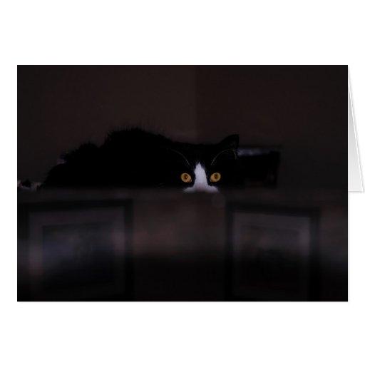 """Observe la Tarjeta-invitación """"gato negro con los  Tarjeta Pequeña"""