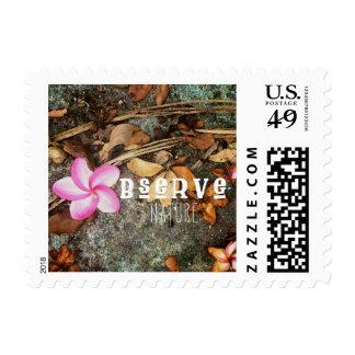 Observe Nature Stamp