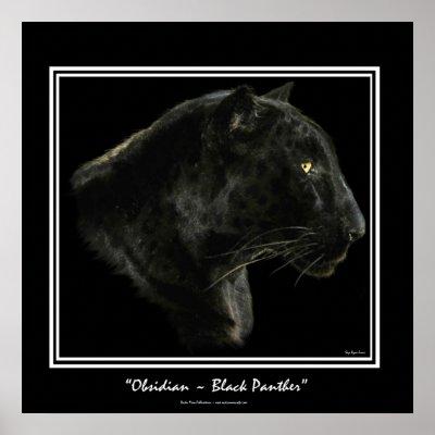 http://rlv.zcache.com/obsidian_black_panther_art_print-p228514076846693789qzz0_400.jpg