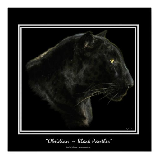 """OBSIDIAN"" ~ Black Panther Puma Wildlife Art Print"
