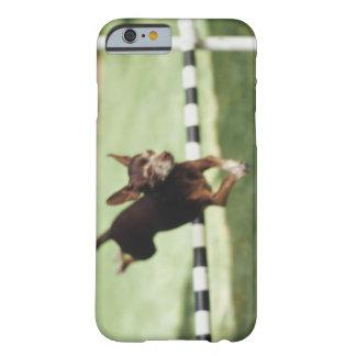Obstáculo de salto de la chihuahua funda de iPhone 6 barely there