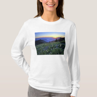 Obstruciton Point Sunset, Olympic NP, WA, USA T-Shirt