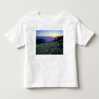 Obstruciton Point Sunset, Olympic NP, WA, USA Toddler T-shirt