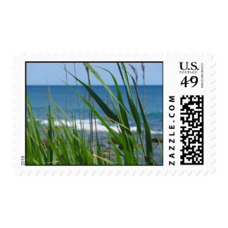Obstructed Ocean View Postage Stamp
