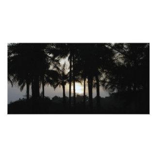 Ocaso en un bosque de la palma tarjeta con foto personalizada