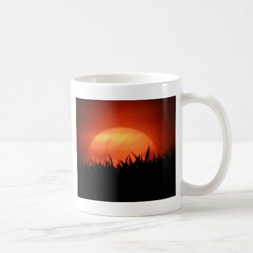 Ocaso rojo detrás de la hierba negra tazas de café