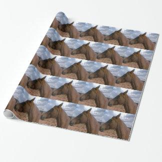 Ocaso Gift Wrap