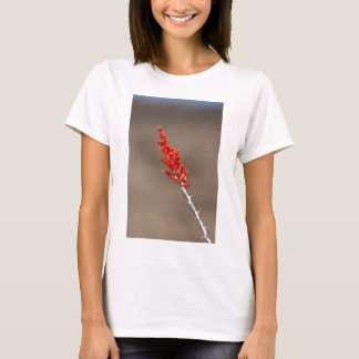Ocatillo Bloom 02 T-Shirt