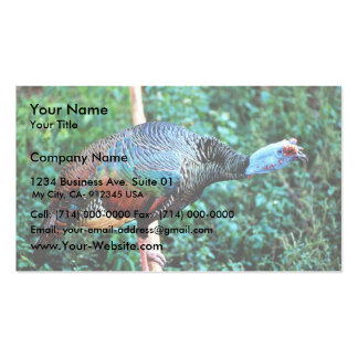Occelated Turkey Business Card Template