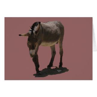 Occidental equino de la ayuda de la condolencia tarjeta de felicitación