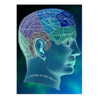 Occult Collection - Phrenology Postcard