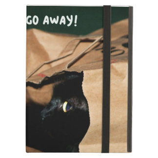 Occupied, Go Away! Funny Cats iPad Case