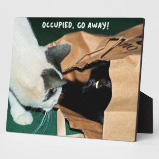 Occupied, Go Away! Funny Cats Plaque