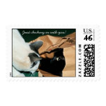Occupied, Go Away! Funny Cats Postage