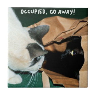 Occupied, Go Away! Funny Cats Tile