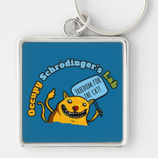 Occupy Schrodinger's Lab Keychains