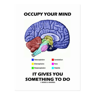 Occupy Your Mind It Gives You Something To Do Postcard