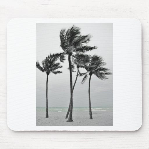 Ocean and Palms Mouse Pad