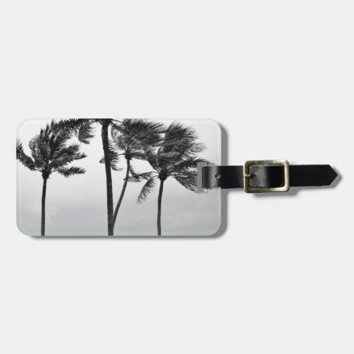 Ocean and Palms Tag For Luggage
