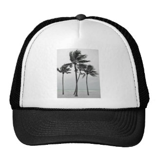 Ocean and Palms Trucker Hat
