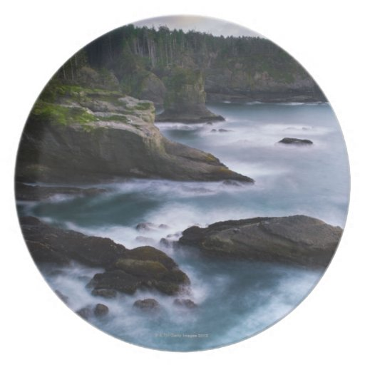Ocean and rocky shore of remote area 2 party plates