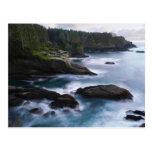 Ocean and rocky shore of remote area 2 postcard